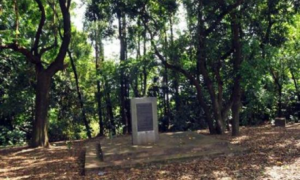 Foto: História de Londrina